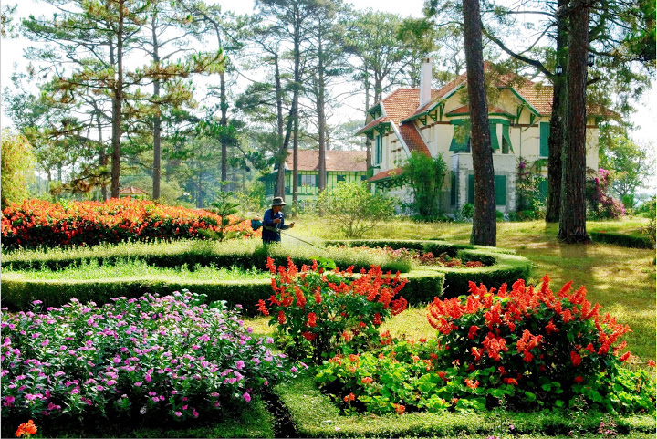 Holiday packages to Vietnam 2016: Travel to Dalat in the season of plums